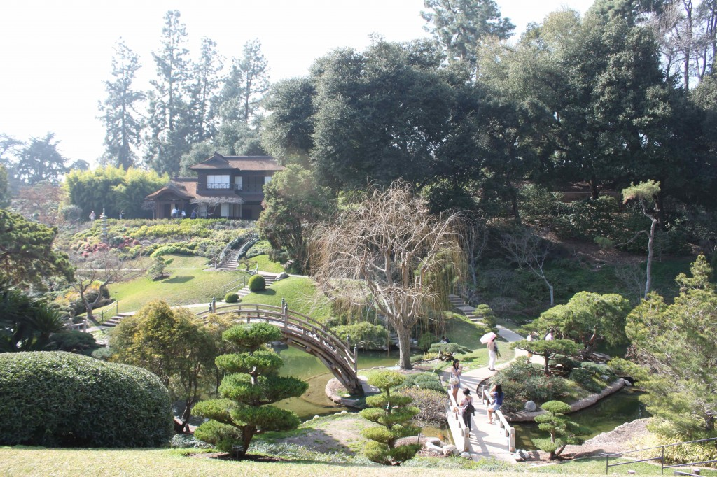 Huntington-Botanical-Garden