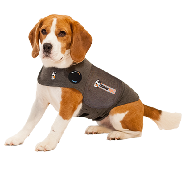 Thundershirt Dogs