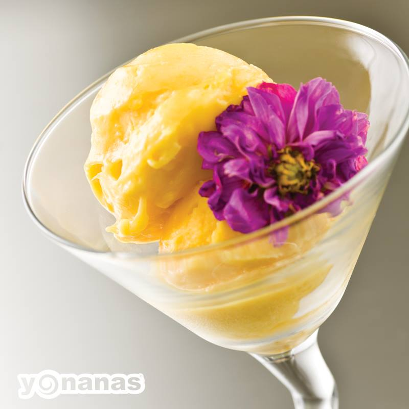 Yonanas-banana-ice-cream