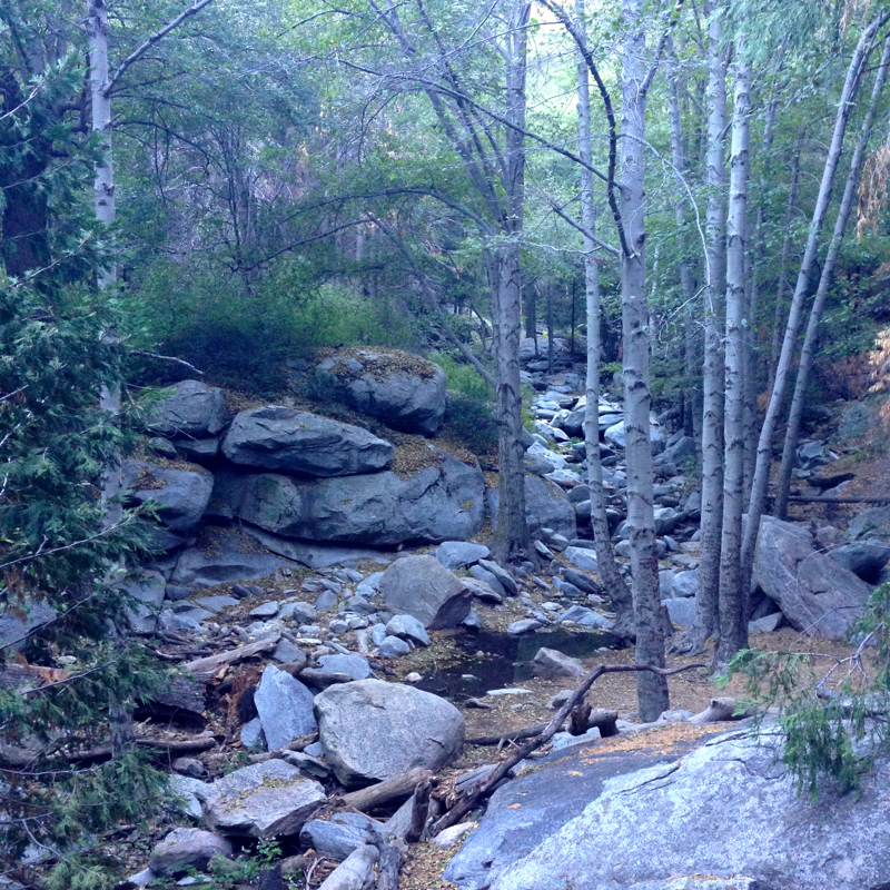seely-lake-heart-rock-trail