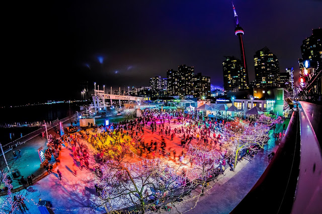 harbourfront skating