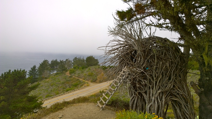 Human Nest Treebones